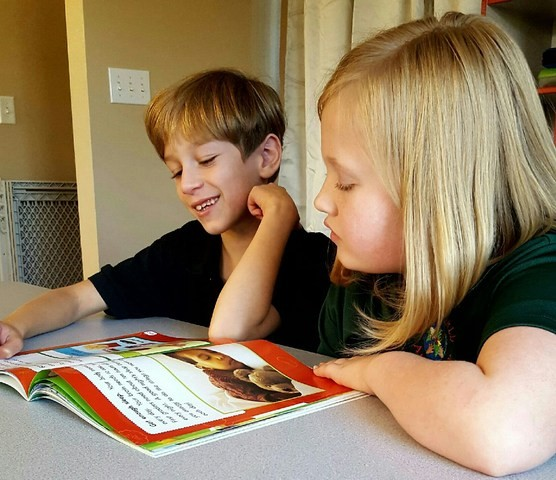 essay writing for special education students Write a persuasive essay special education research paper topics free presentation there's even evidence that students can look at the way students learn.
